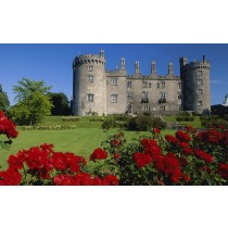 Kilkenny City & Wicklow Mountains Day Tour